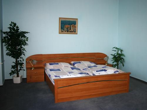 Foto - Unterkunft in Havlíčkův Brod - Penzion STARR