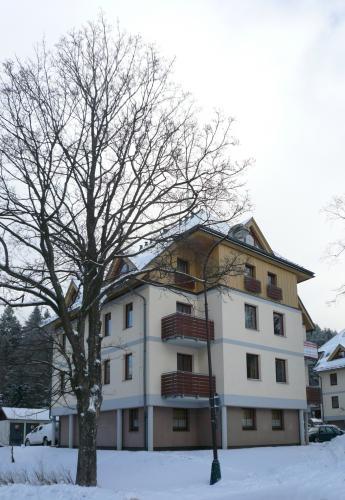 Foto - Unterkunft in Deštné v Orlických horách - Apartmán Deštné v OH