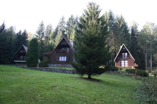 Foto - Unterkunft in Bystré - Chata u Nás
