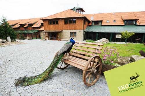 Foto - Unterkunft in Horní Chrášťany - Ekofarma Horní Chrášťany